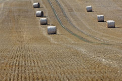 Straw on a grainfield Royalty Free Stock Photos