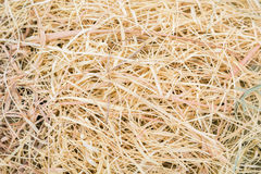 Straw grass Stock Photography