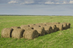 Straw Harvest Stock Photography