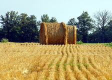 Straw has been cut and baled Stock Photos