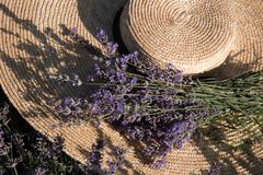 Straw hat with a bouquet of lavender hat with lavender in a lavender field royalty free stock image