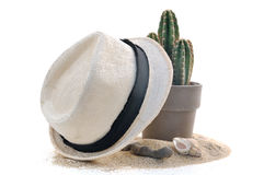 Straw hat and cactus on the sand Stock Image