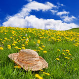 Straw hat dandelion meadow Royalty Free Stock Photography