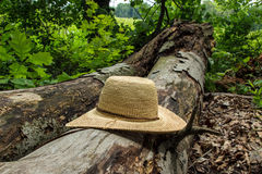 Straw Hat on Fallen Tree Royalty Free Stock Images