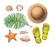 Straw hat, flip flops, shells and starfishes royalty free illustration