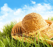 Straw hat on grass Stock Photography