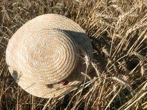 Straw Hat i ett vetefält i solen arkivfoto
