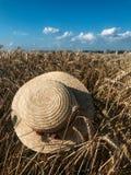 Straw Hat i ett vetefält i solen arkivbilder