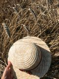 Straw Hat i ett vetefält i solen royaltyfria foton