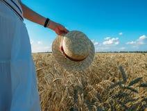 Straw Hat i ett vetefält i solen royaltyfri fotografi