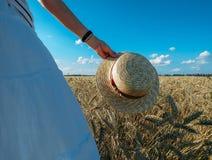 Straw Hat i ett vetefält i solen royaltyfri bild