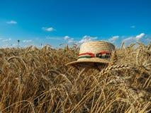 Straw Hat i ett vetefält i solen royaltyfri foto