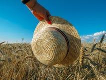 Straw Hat i ett vetefält i solen royaltyfria bilder