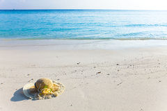 Straw hat lay on sand at edge of sea Stock Photos
