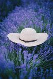 Straw hat lies on lavender Stock Photography