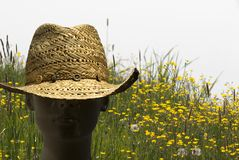 Straw Hat and Meadow Flowers Royalty Free Stock Image