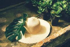 Straw hat and monstera royalty free stock photo