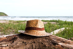 Straw hat over the timber Stock Image