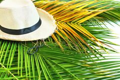Straw Hat Tropical Palm Leaves-Gelb-Hintergrund lizenzfreie stockfotos