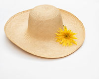 Straw Hat with Yellow Daisy Royalty Free Stock Photo