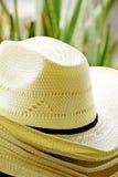 Straw Hats Stock Afbeeldingen
