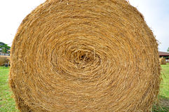 Straw Hay Royalty Free Stock Image