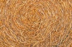 Straw Hay Background Imágenes de archivo libres de regalías