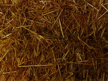 Straw / Hay Background. Hay / straw background featuring many shades of brown, gold and tan. Suitable for backdrop, frame, natural, earthy background Stock Images