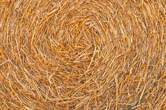 Straw Hay Background Royalty Free Stock Images