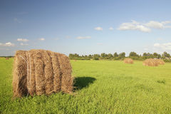 Straw hay bale. Haystack on a green meadow in solar summer day royalty free stock photo