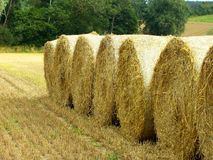 Straw Hay bales Royalty Free Stock Image