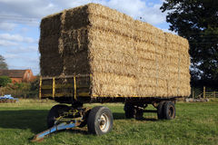 Straw hay bales on a trailer Stock Photography
