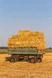 Straw hay bales on a trailer Stock Image