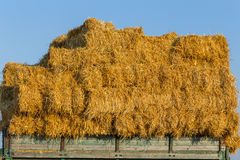 Straw hay bales on a trailer Royalty Free Stock Photography