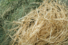 Straw and hay close up background Royalty Free Stock Photos