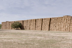 Straw or hay stacked in a field after harvesting Stock Images