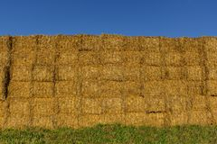 Straw or hay stacked in a field after harvesting in the sunset light. Stock Image