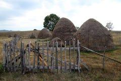 Straw hays Stock Photos