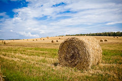 Straw Haystacks Royalty Free Stock Photo