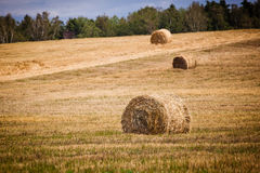 Straw Haystacks Stock Photos