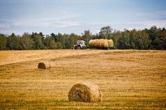 Straw Haystacks Stock Images