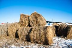 Straw Haystacks imagens de stock