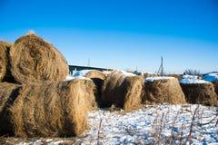 Straw Haystacks imagem de stock