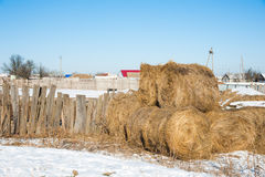 Straw Haystacks imagem de stock royalty free