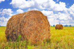 Straw Haystacks on the field Royalty Free Stock Photography