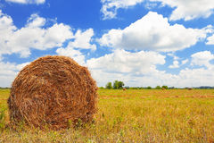 Straw Haystacks on the field Stock Photo