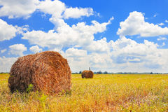 Straw Haystacks on the field Stock Photography