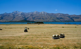Straw haystacks on the field and tractor Stock Image