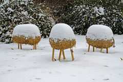 Straw headless sheep under the snow Stock Photo