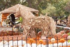 Straw Horses mit Kürbishütte Stockbilder